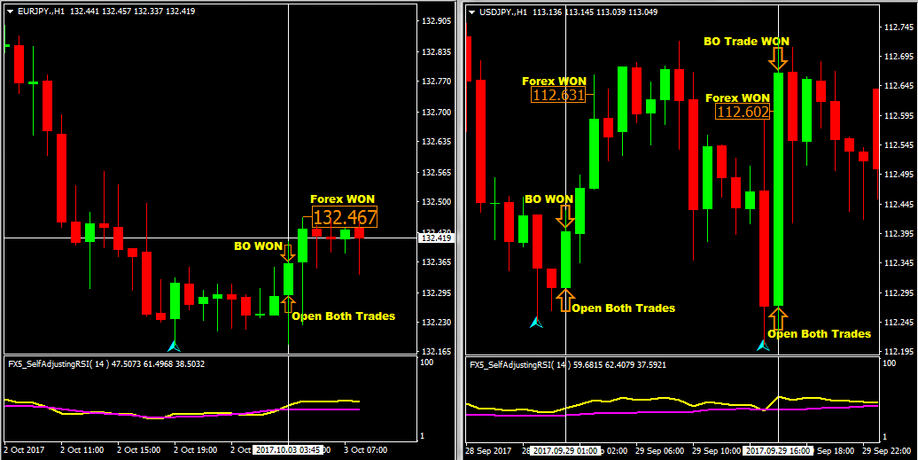 Forex binary options combo grail